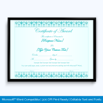 Award Certificate for company