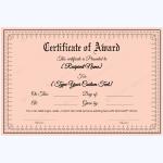 Award-Certificate-27-PNK