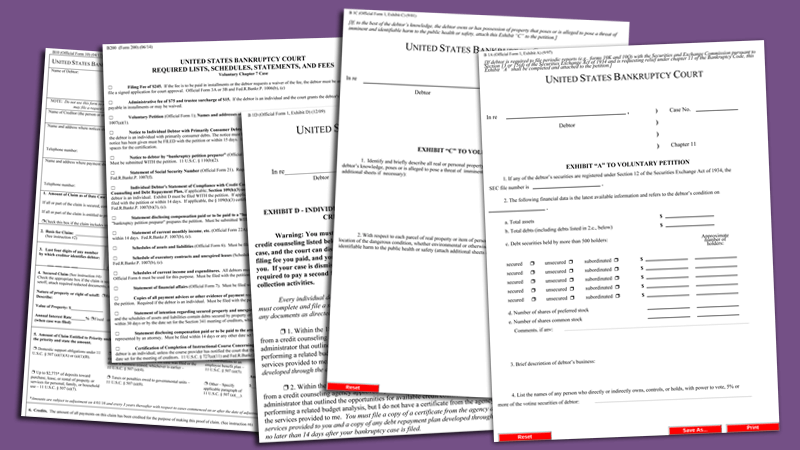 Bankruptcy Form Templates - Printable Bankruptcy Forms for PDF