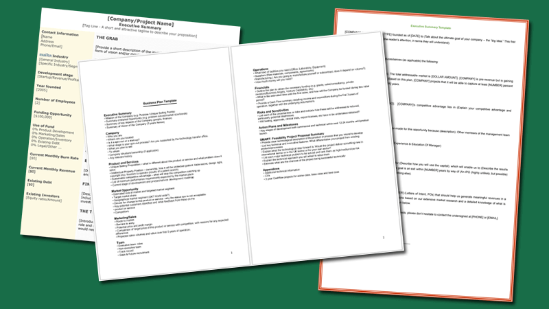 3+ Executive Summary Examples For Word And PDF