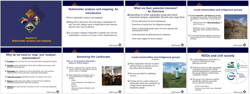 Stakeholder Mapping and Analysis (PPT)