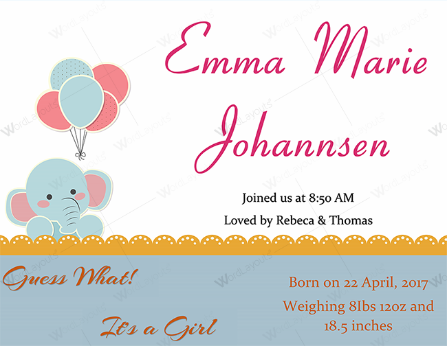 Baby Announcement Template Example