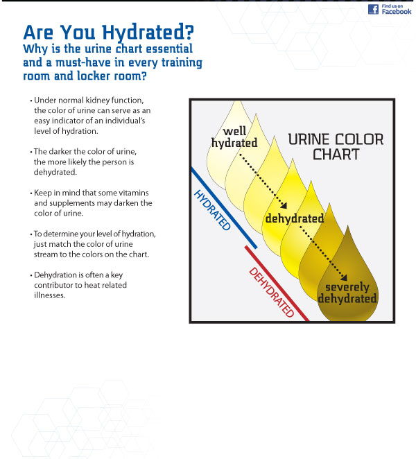 Normal Urine Color Chart Template 02