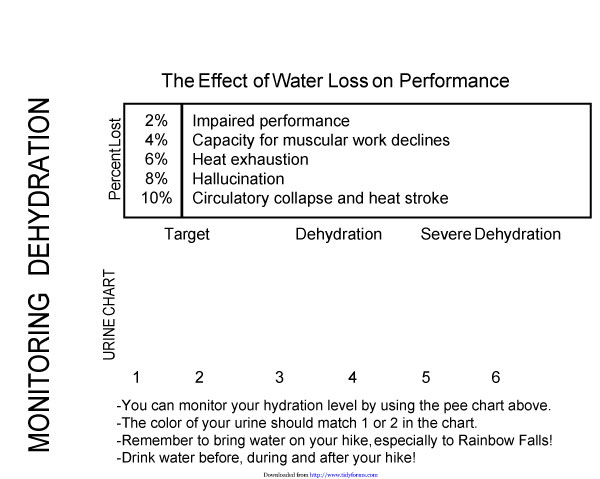 Urine color chart 03