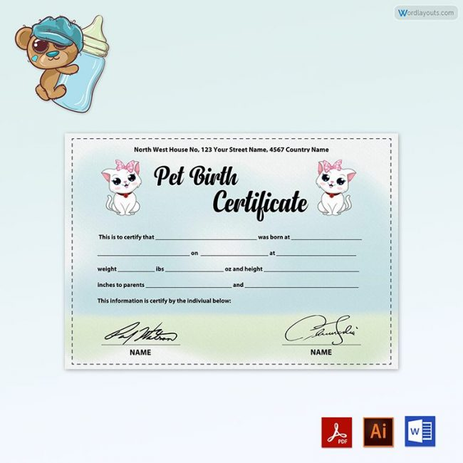 Pet Birth Certificate (White Little Cats)