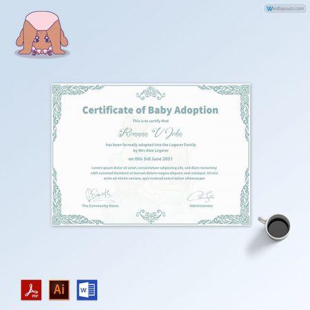 Baby Adoption Certificate (Elegant Color Border)